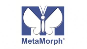 logo metamroph