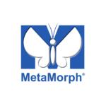 programmation logicielle metamorph